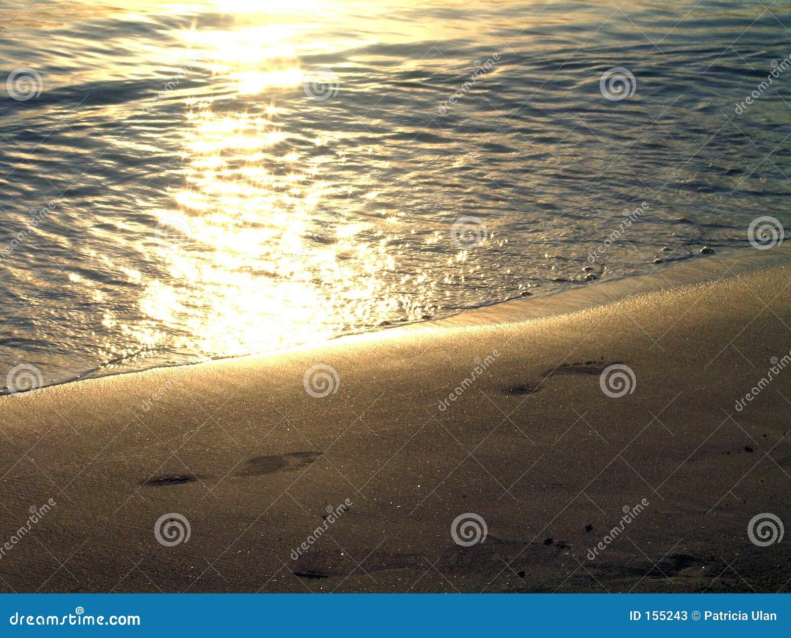 Footprints at sunset