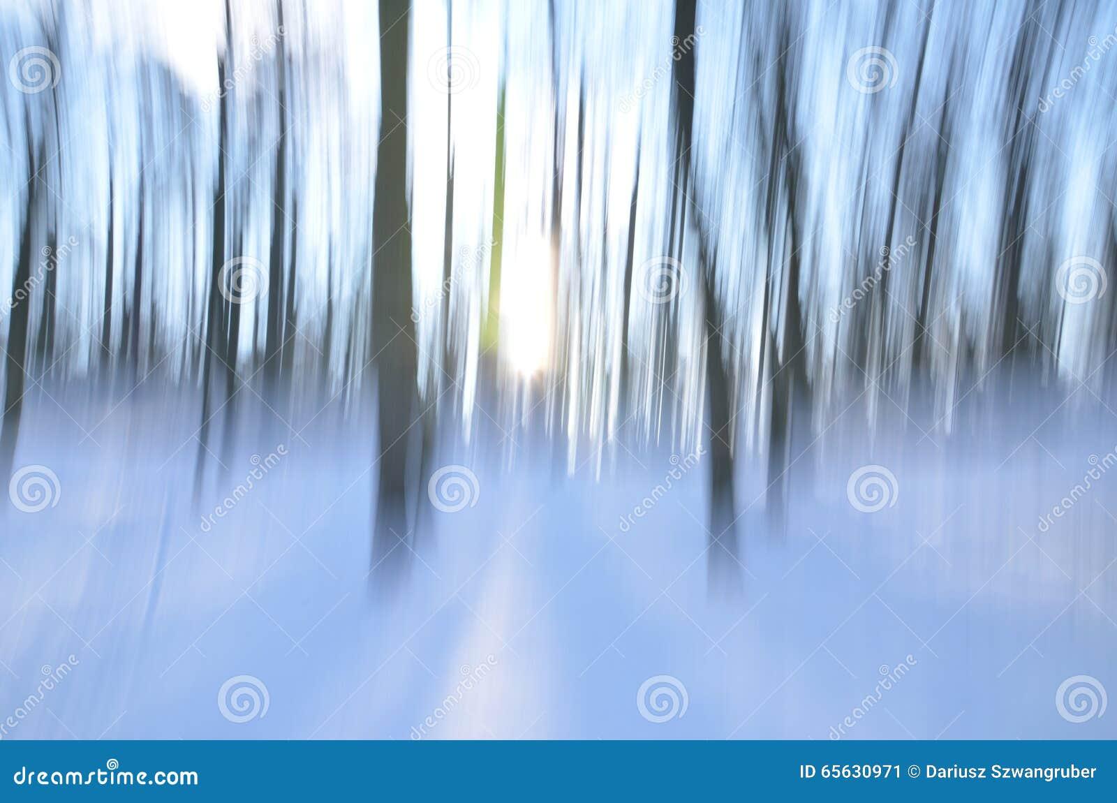 Forêt abstraite dans l hiver