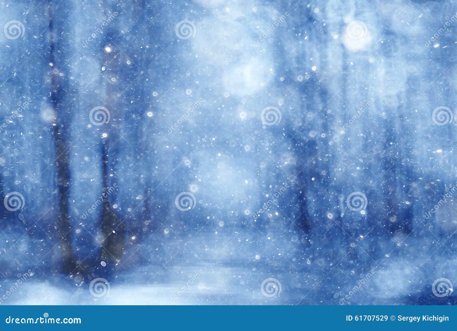 Forêt d hiver de fond brouillée par bleu