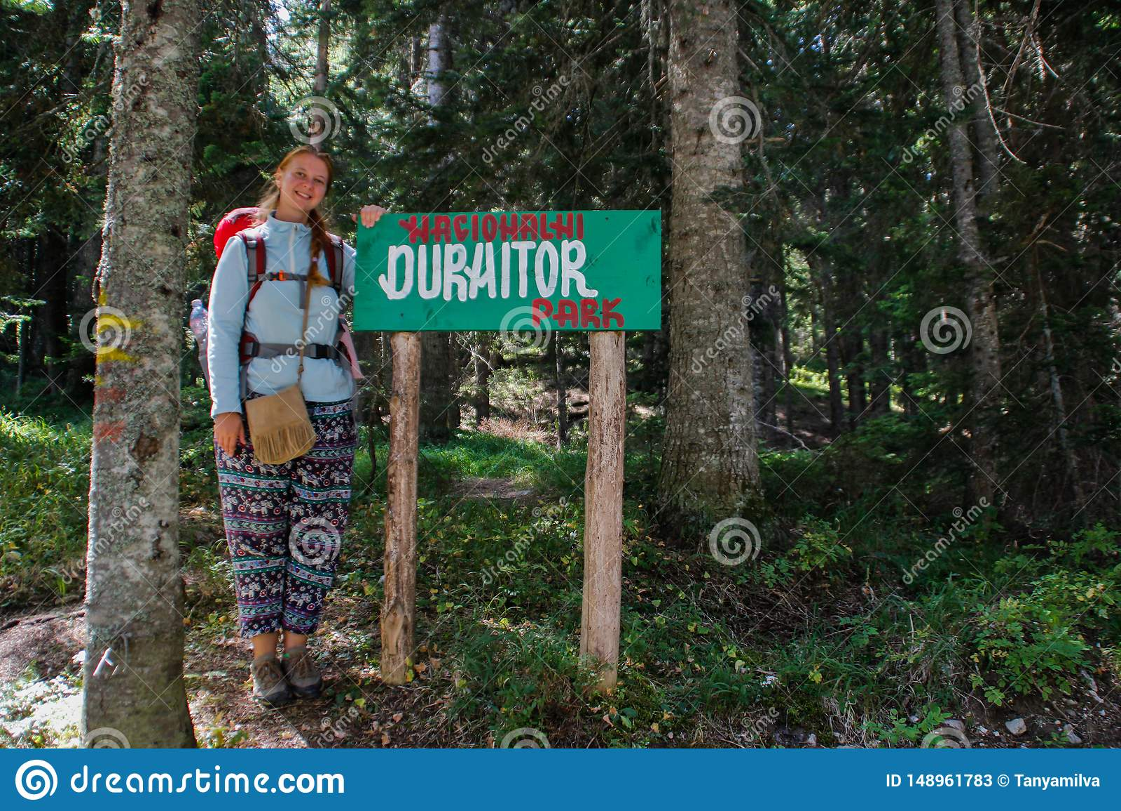 For?t de pin de parc national de Durmitor dans Mont?n?gro Le touriste de randonneur de fille se tient ? c?t? du parc d indicateur