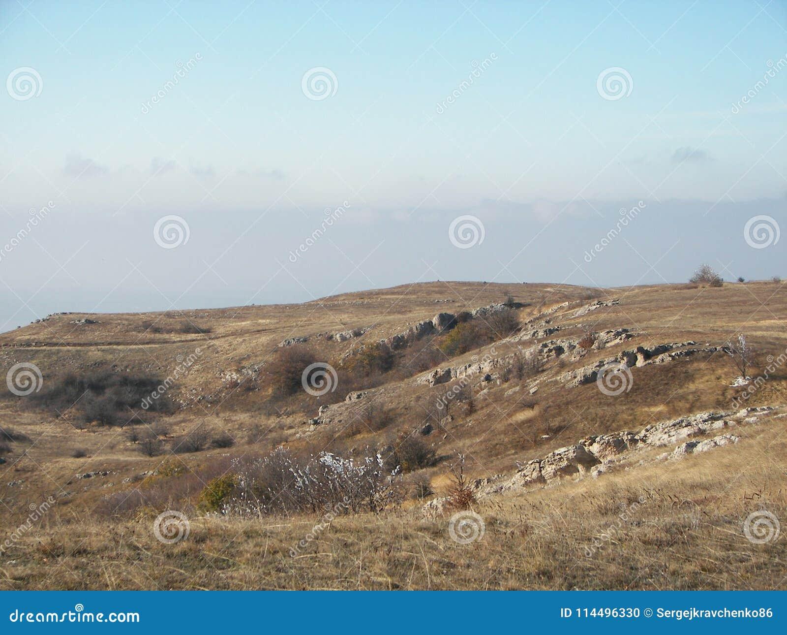 Forêt de ressort pendant le matin dans les montagnes criméennes