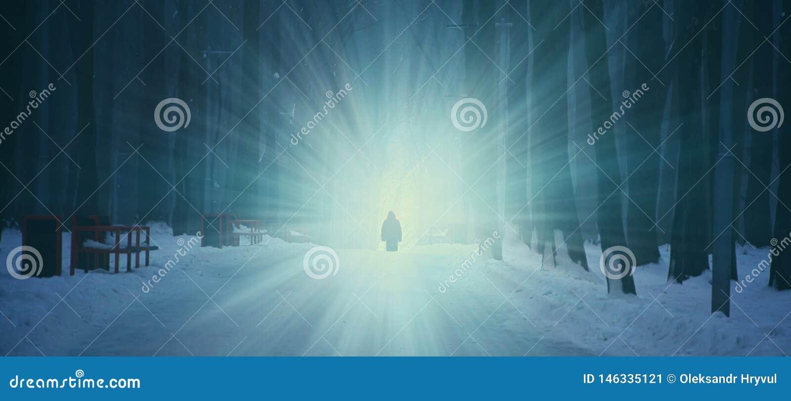 Forêt foncée d hiver dans le brouillard Personne solitaire sur le fond de la lumière