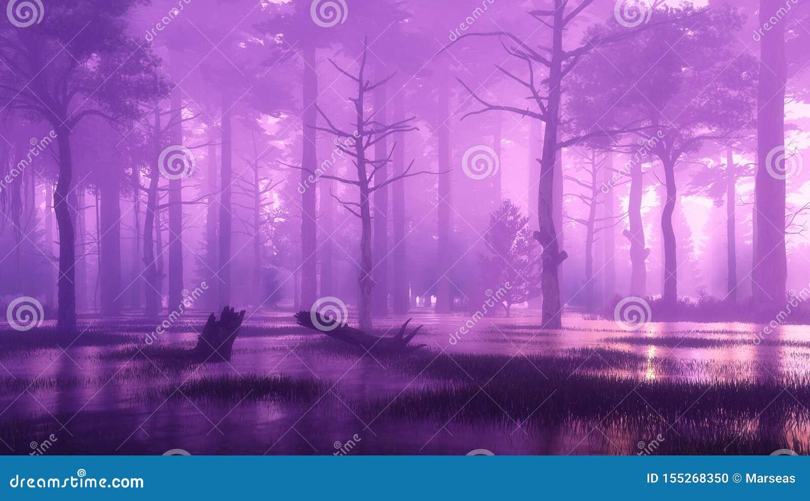 Forêt mystérieuse et marécageuse foncée la nuit brumeux