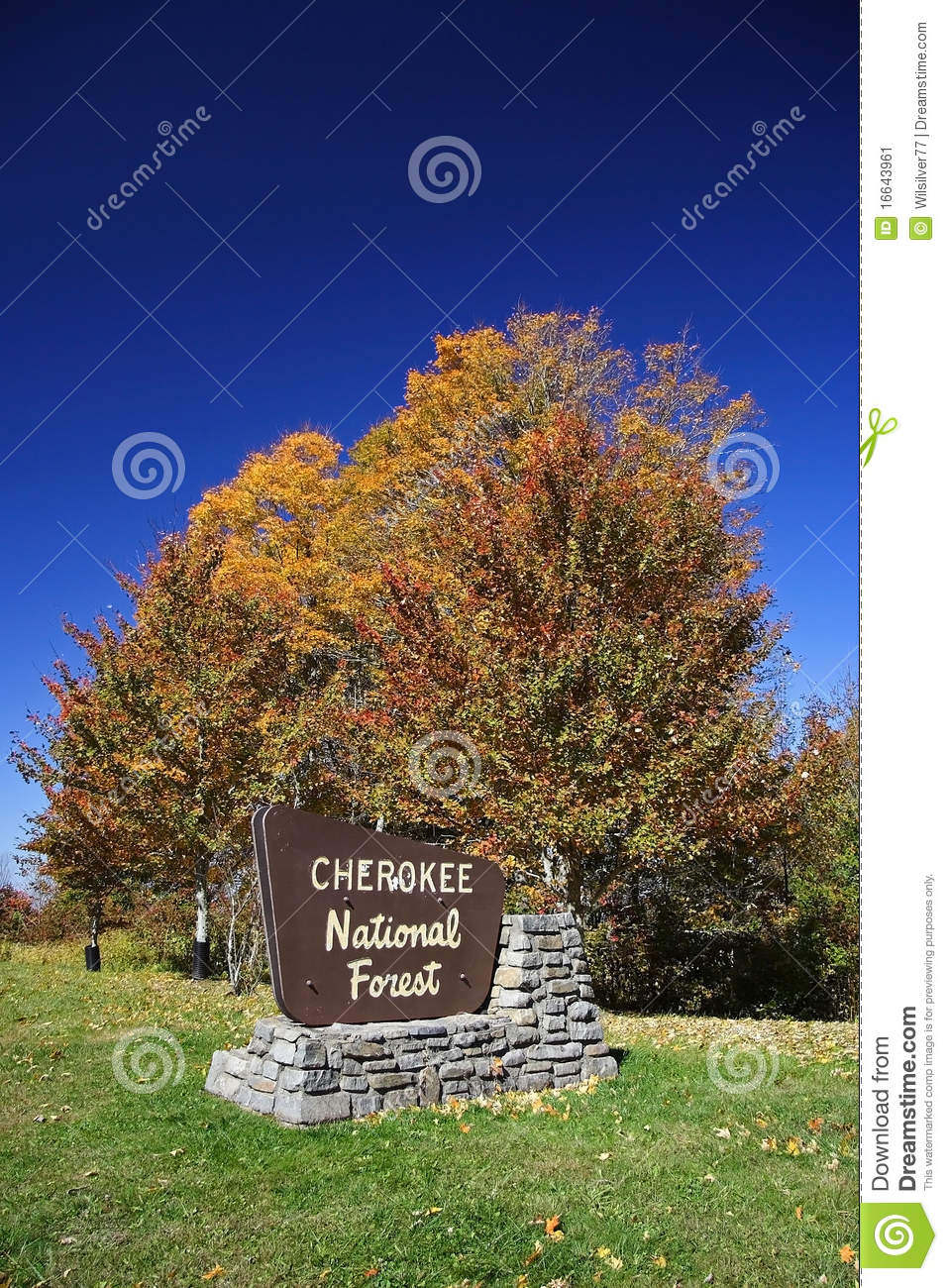 Forêt nationale cherokee