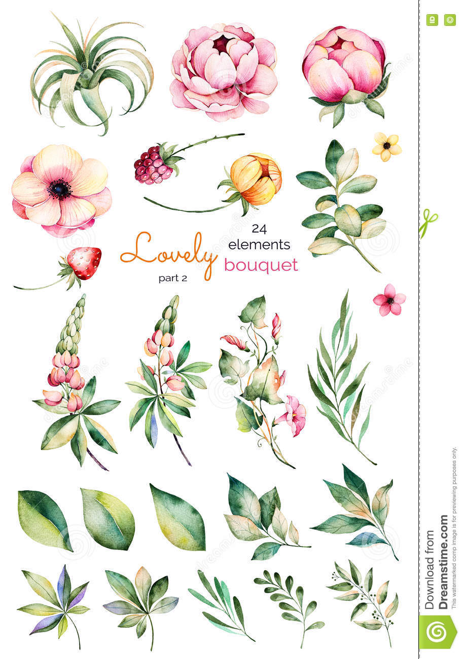 Foral collection with flower,peonies,leaves,branches,lupin,air plant,field bindweed,strawberry and more.