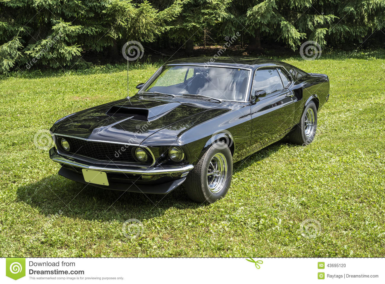Did 1969 Mach One Come With 429 Html Autos Post