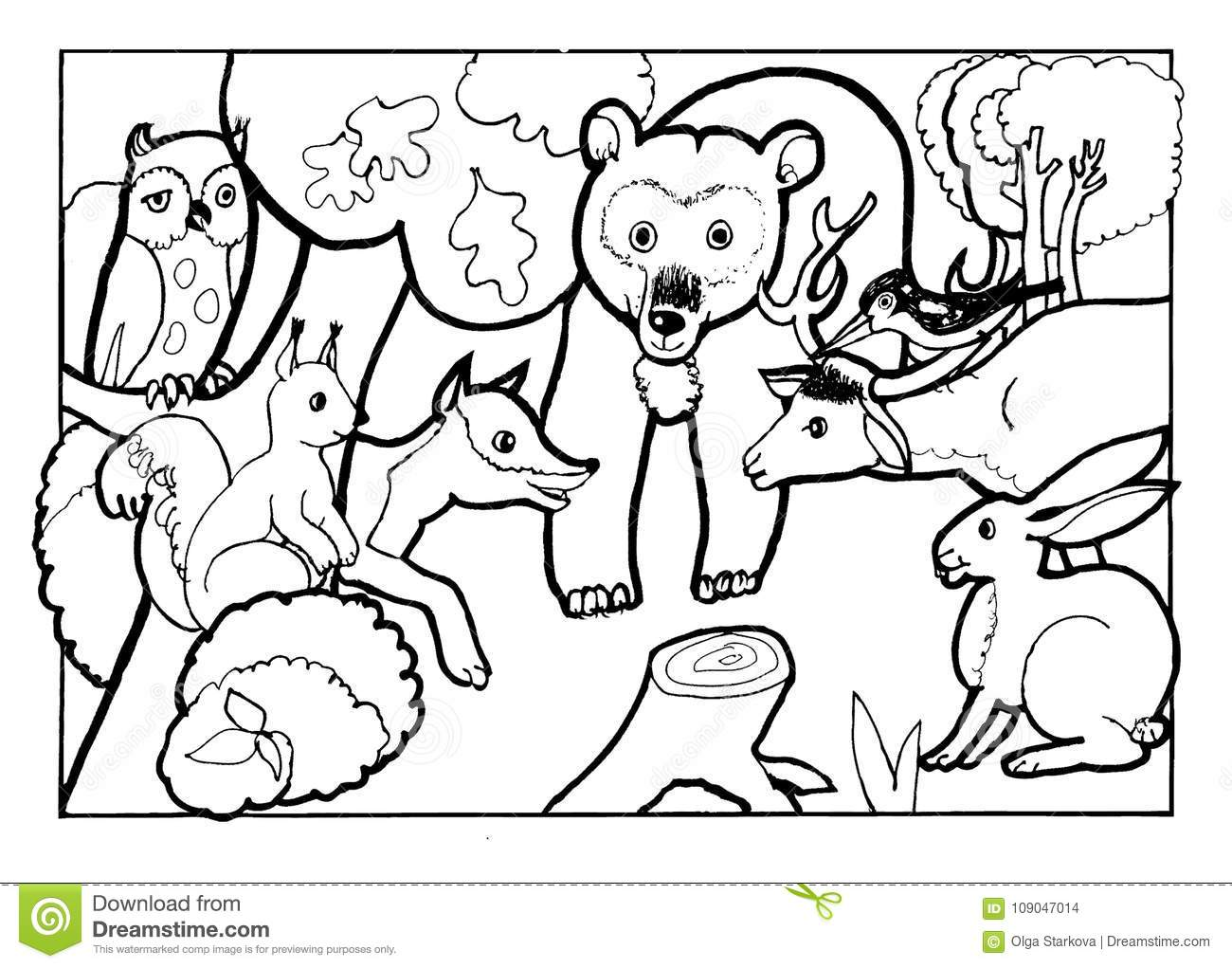 Forest Animals Coloring Pages Forest Coloring Pages For Kids At