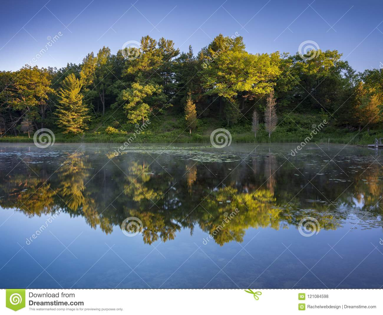 Forest bathed in warm sunrise light reflected in perfect symmetry over calm lake.