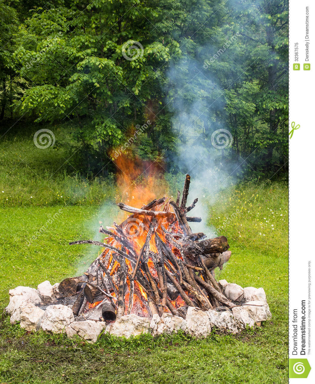 Forest Camp Fire