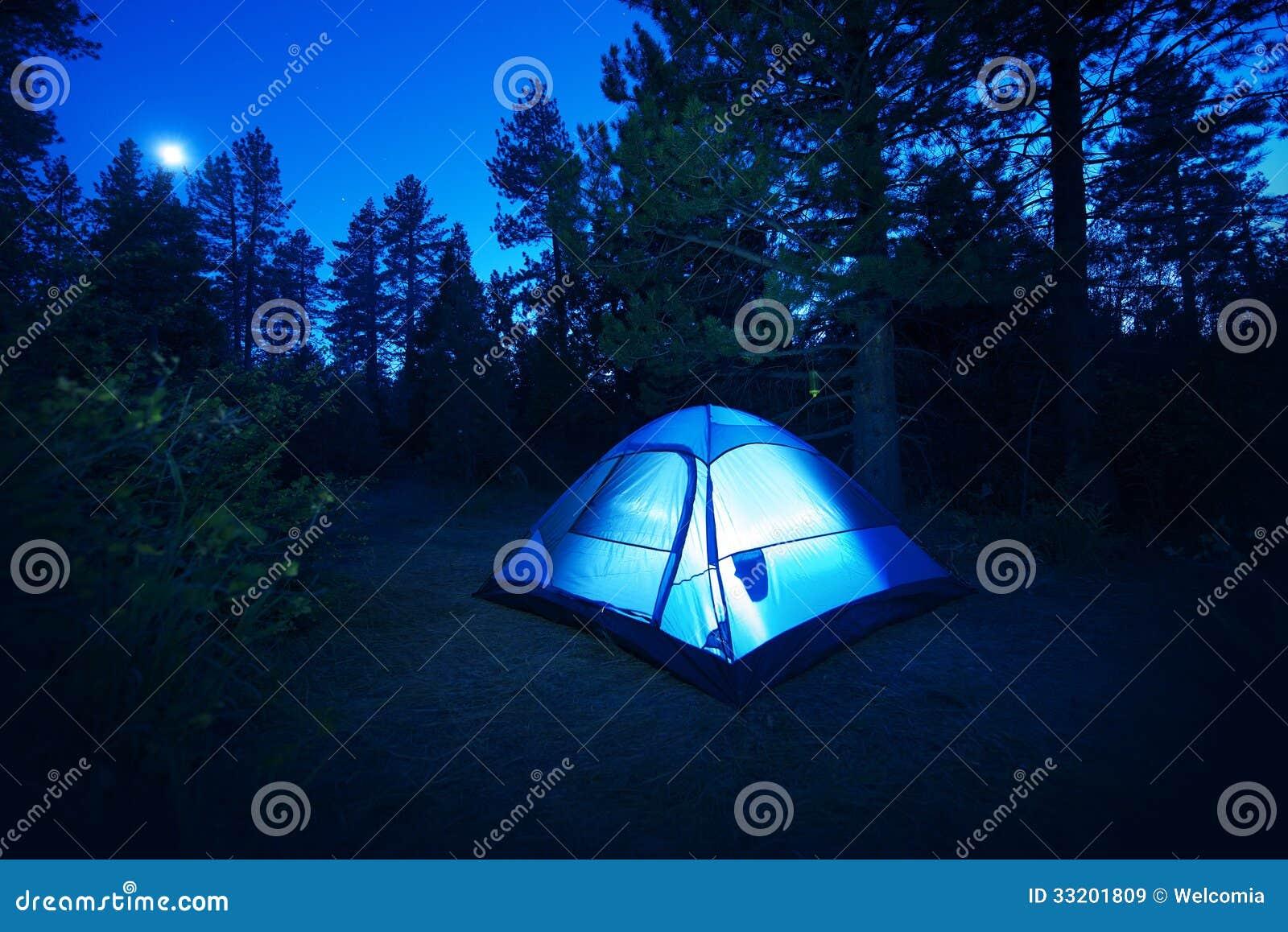 Forest Camping - Zelt
