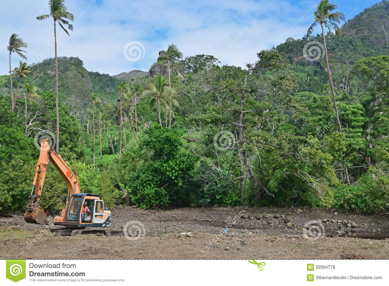 Forest clearance or being logged down due to development in tropical third world country