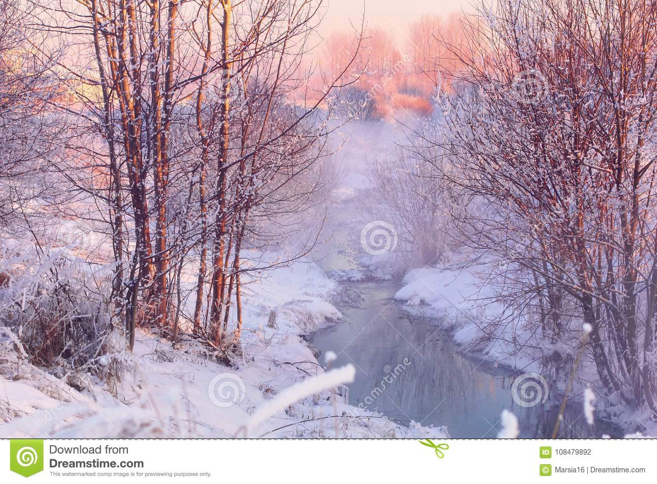 Forest creek in winter forest