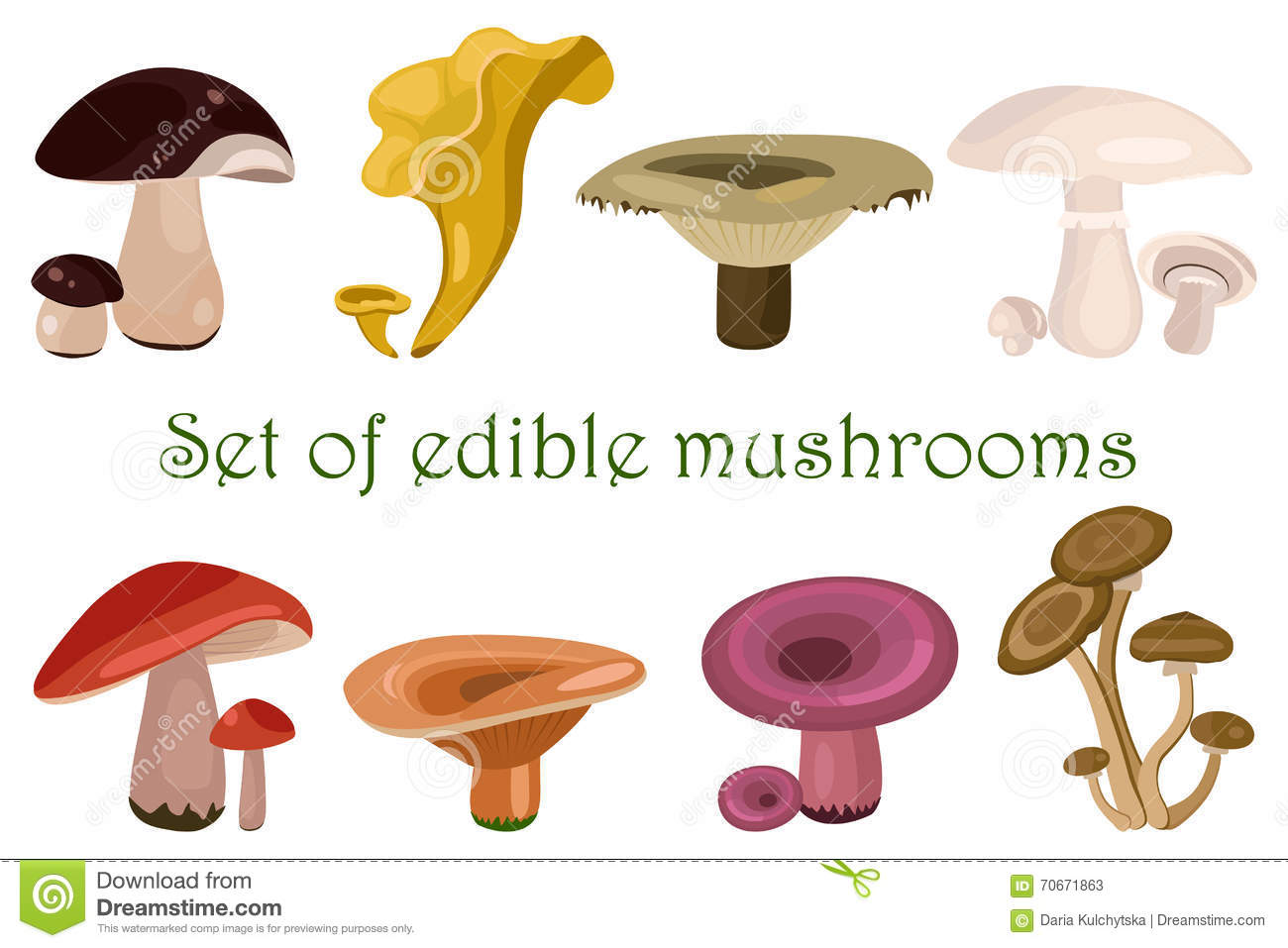 Every Type Of Mushroom You Need To Know About