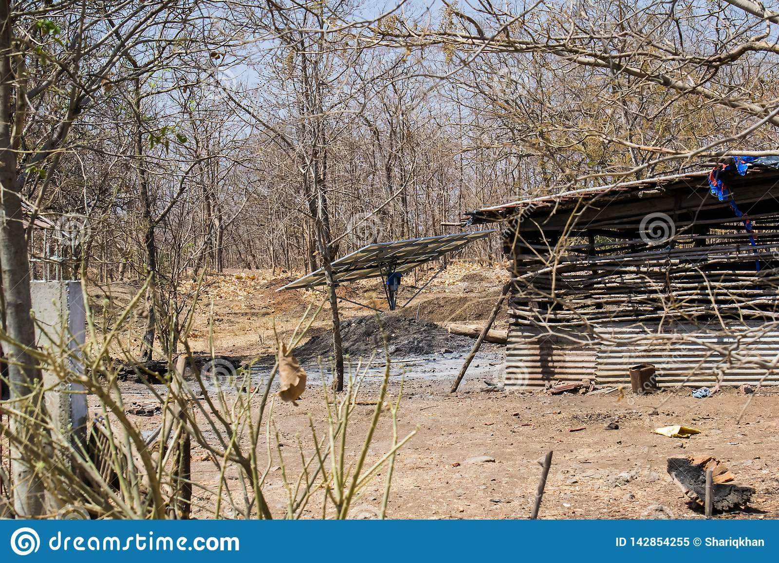 Forest Encroachment Indore Madhya Pradesh