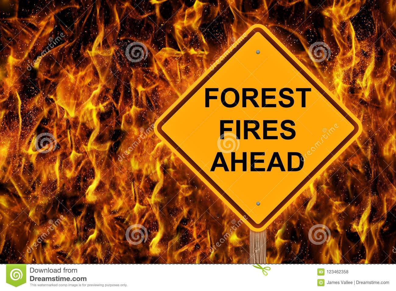 Forest Fire Ahead Caution Sign