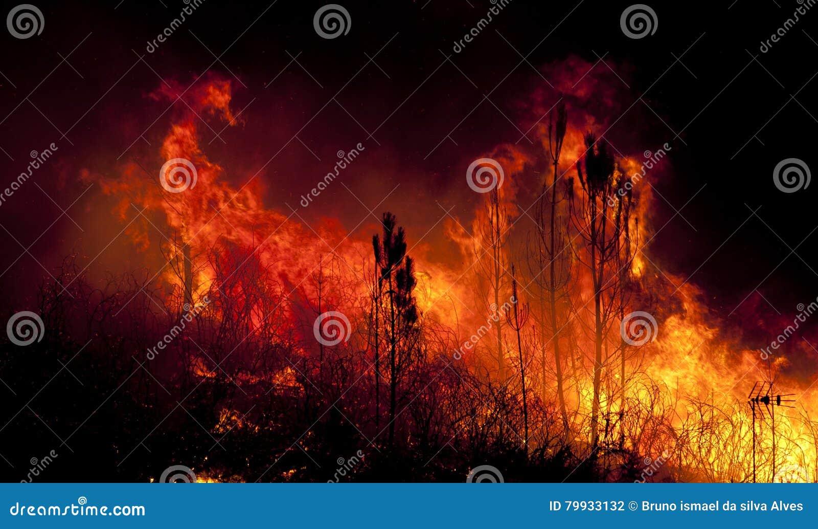 Forest Fire cerca de una casa