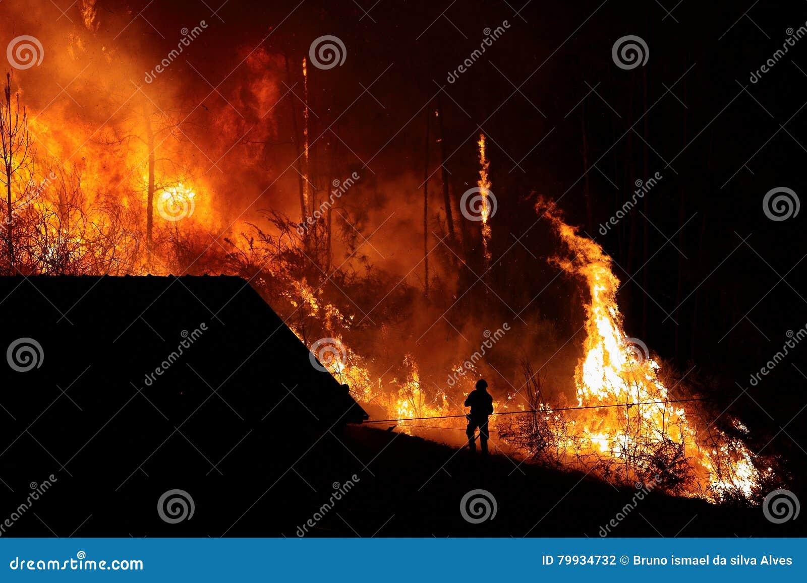Forest Fire cerca de una casa, silueta del bombero