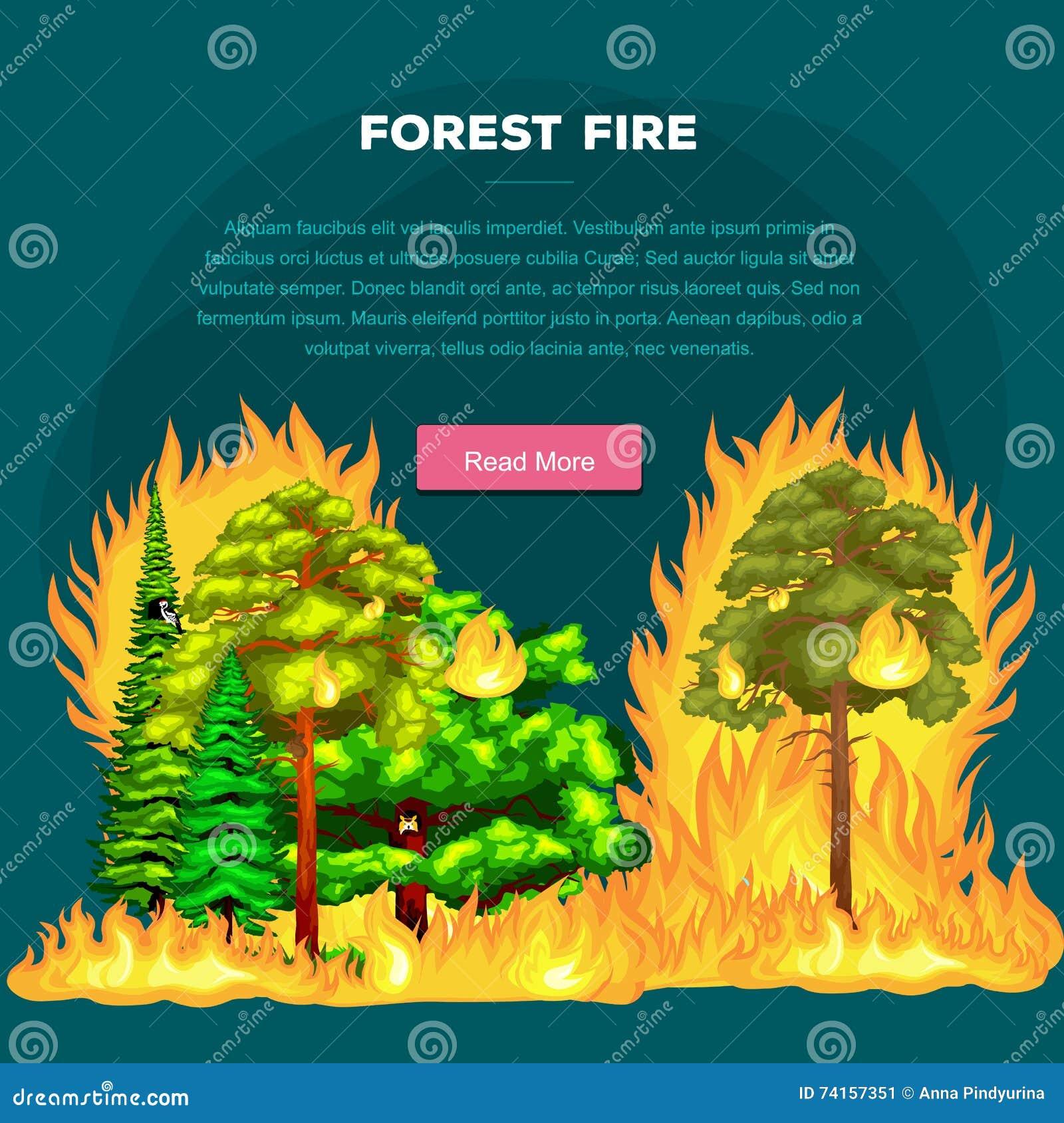 Forest Fire, fogo em dano da paisagem da floresta, desastre da ecologia da natureza, árvores ardentes quentes, chama do incêndio