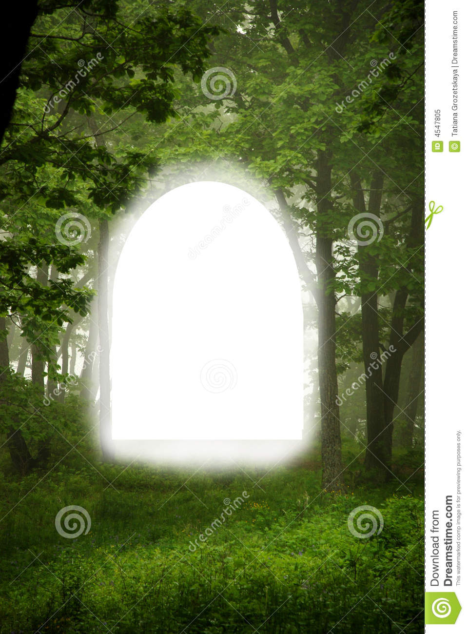 Forest window, natural frame for text, design element, summer.