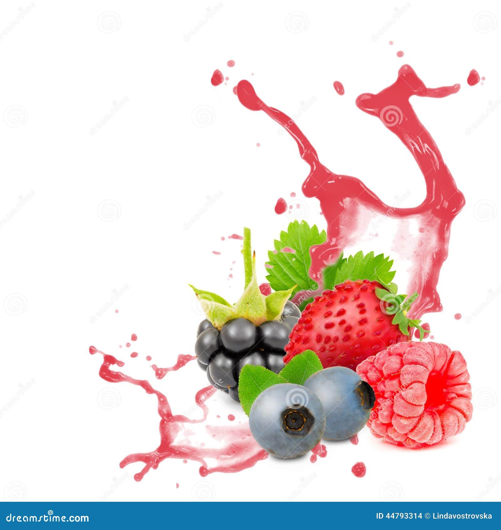 Fruit splash classic - Forest Fruit Splash Stock Images