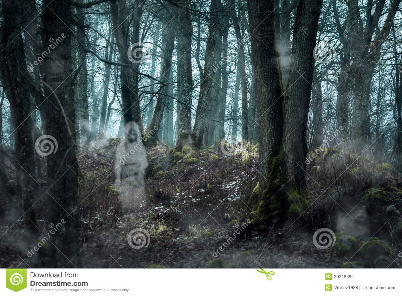 Forest with the ghosts