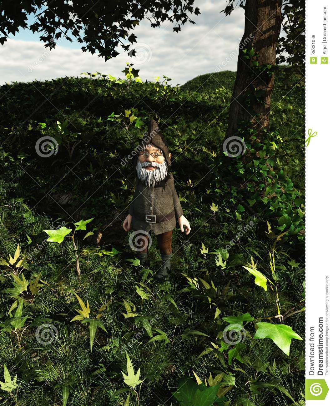 Forest Gnome Royalty Free Stock Image Image 35331066