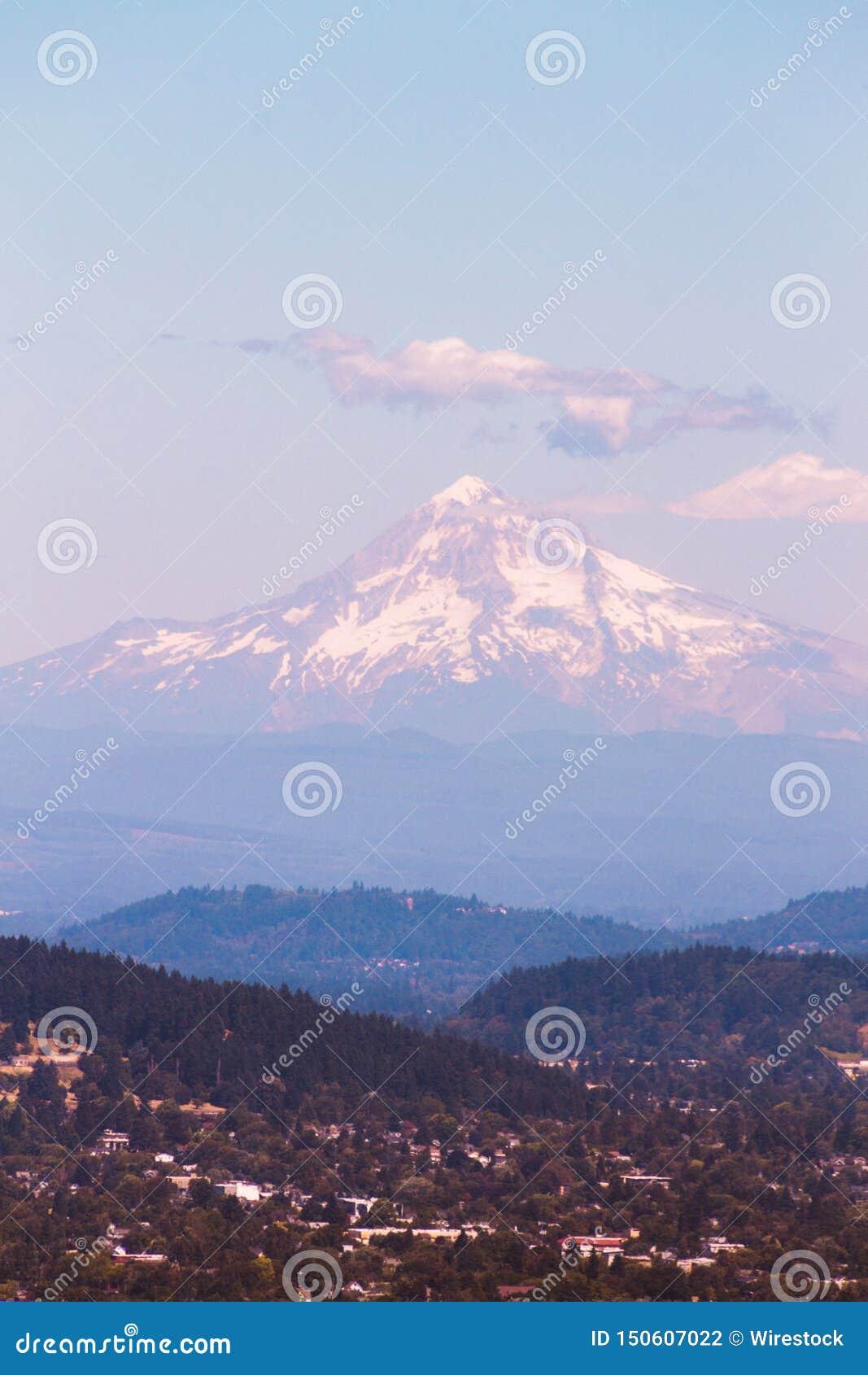 Forest Hills verde com uma montanha nevado bonita no fundo