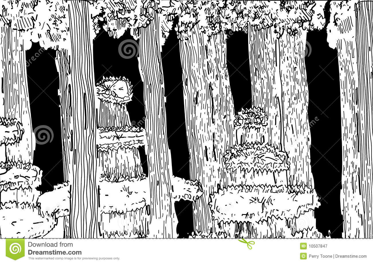 forest illustration black and white royalty free stock