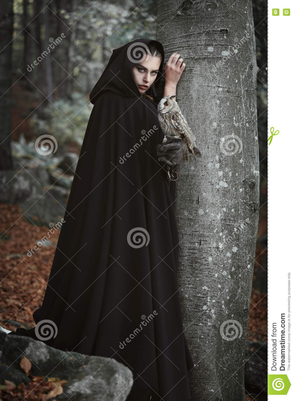 Forest keeper with grey owl