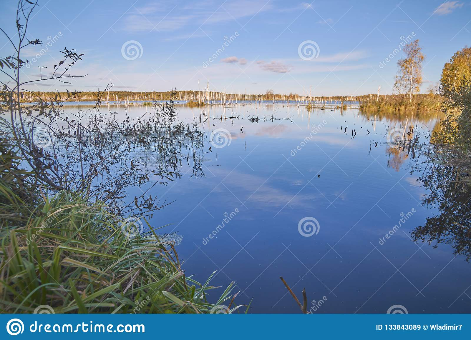 Forest Lake in centraal Rusland