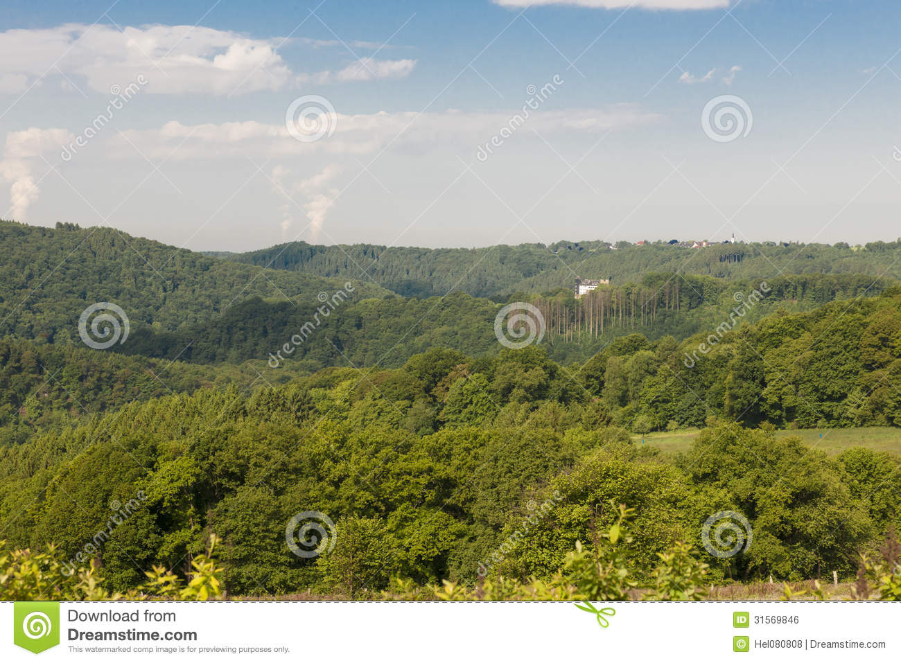 Forest landscape and castle stock photo image 31569846 for Nearby landscapers