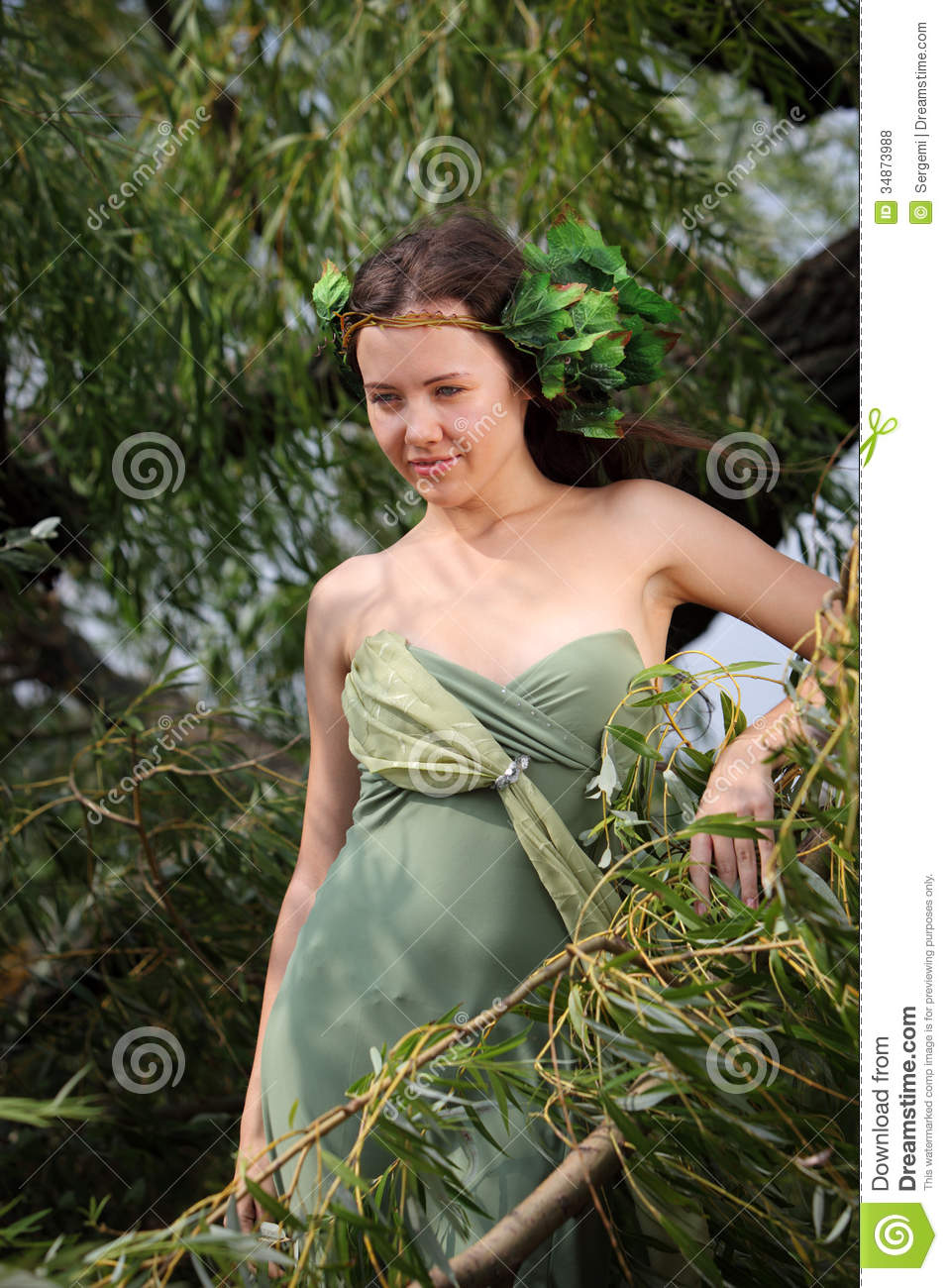 Forest Nymph Royalty Free Stock Photos - Image: 34873988: http://dreamstime.com/royalty-free-stock-photos-forest-nymph-young-cheerful-girl-image-image34873988
