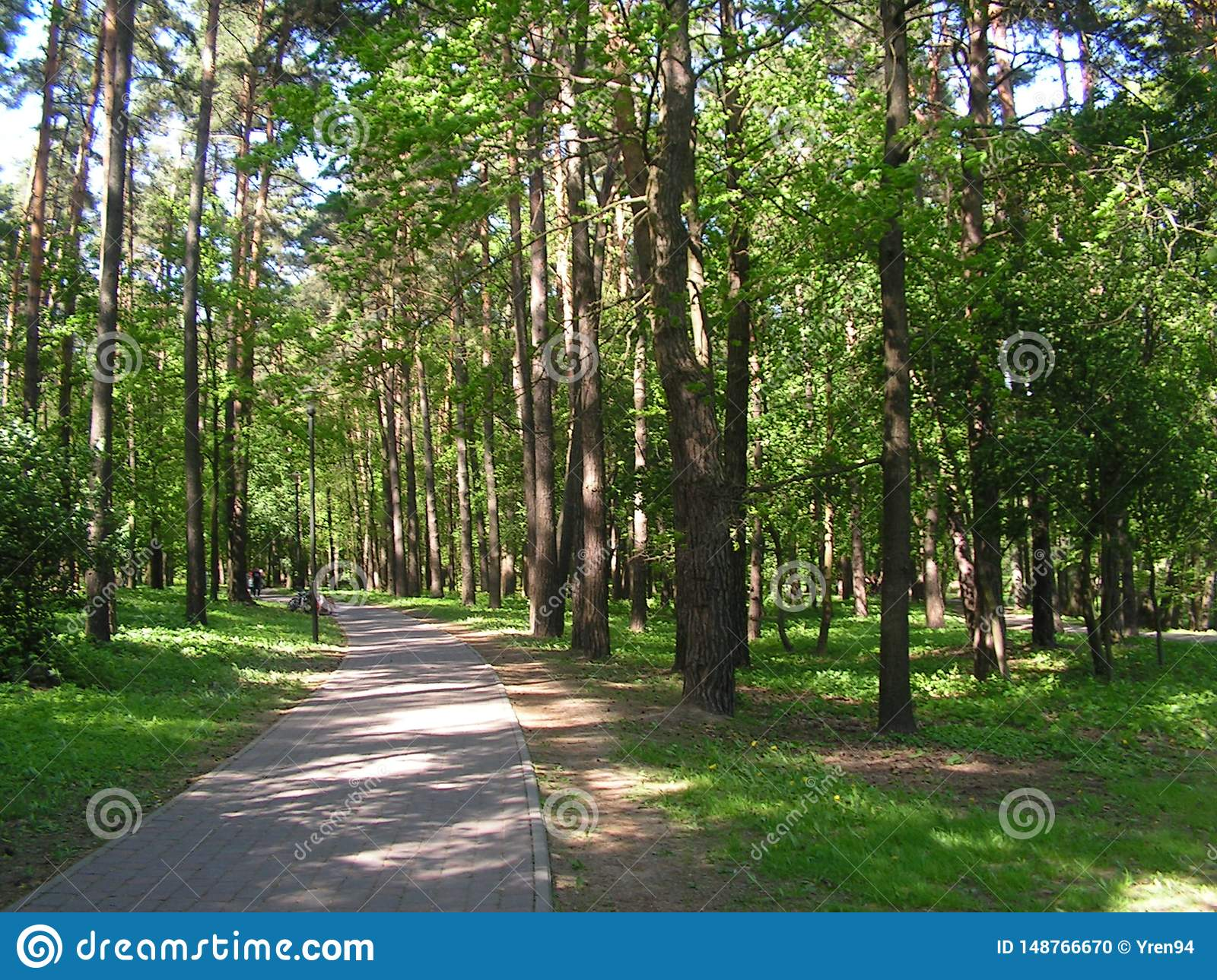 """7 Forest Park """"DROZDY """"в Минске Беларуси"""