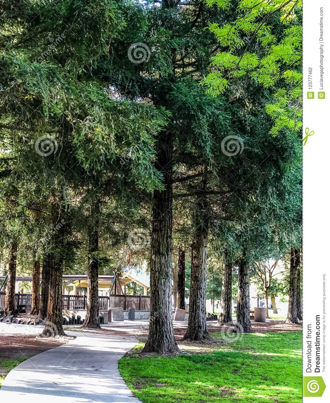 Forest Pathway i Donelly parkerar