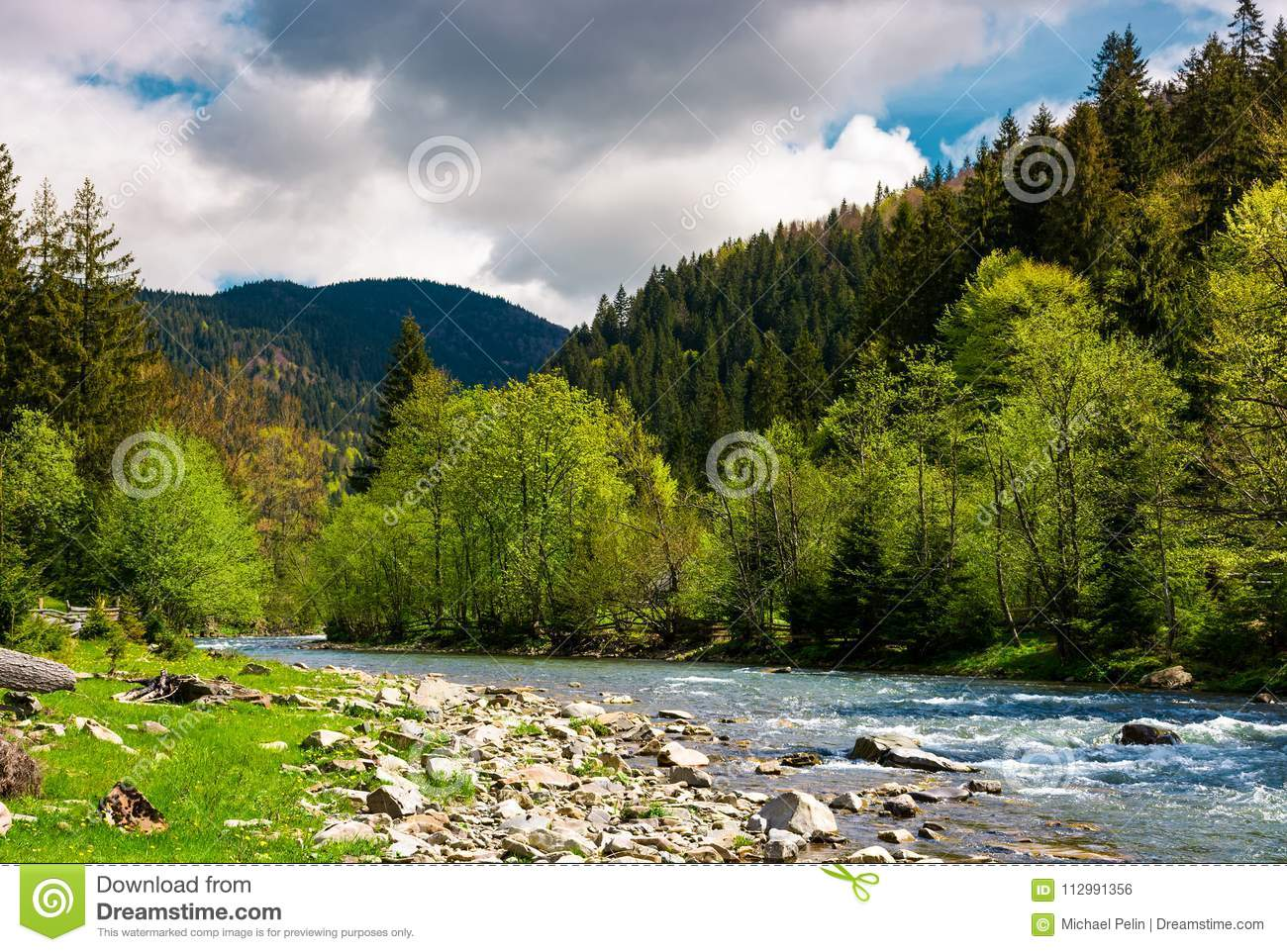 Forest river with rocky shore in mountains