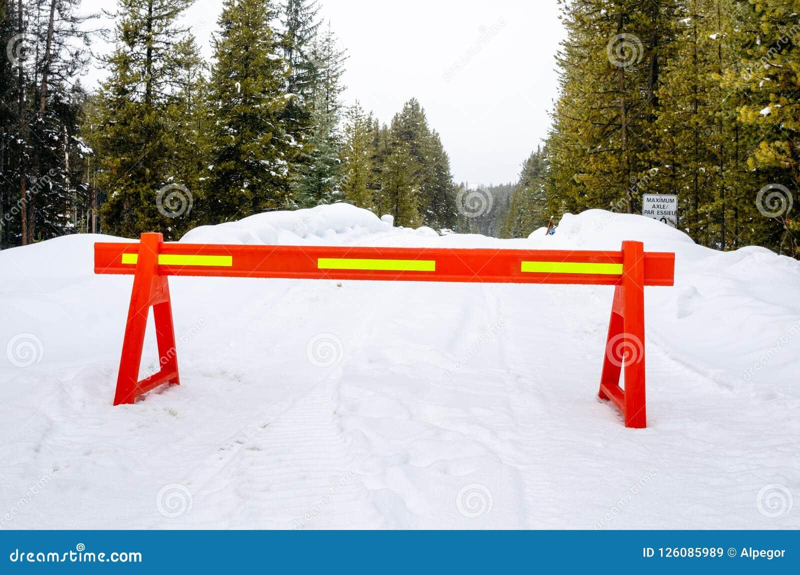 Forest Road Closed por razões de segurança após uma queda de neve pesada
