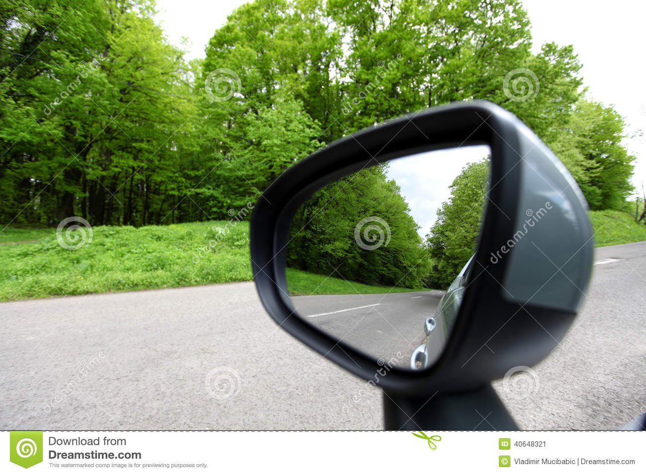 Forest road reflection, rearview car driving mirror view green
