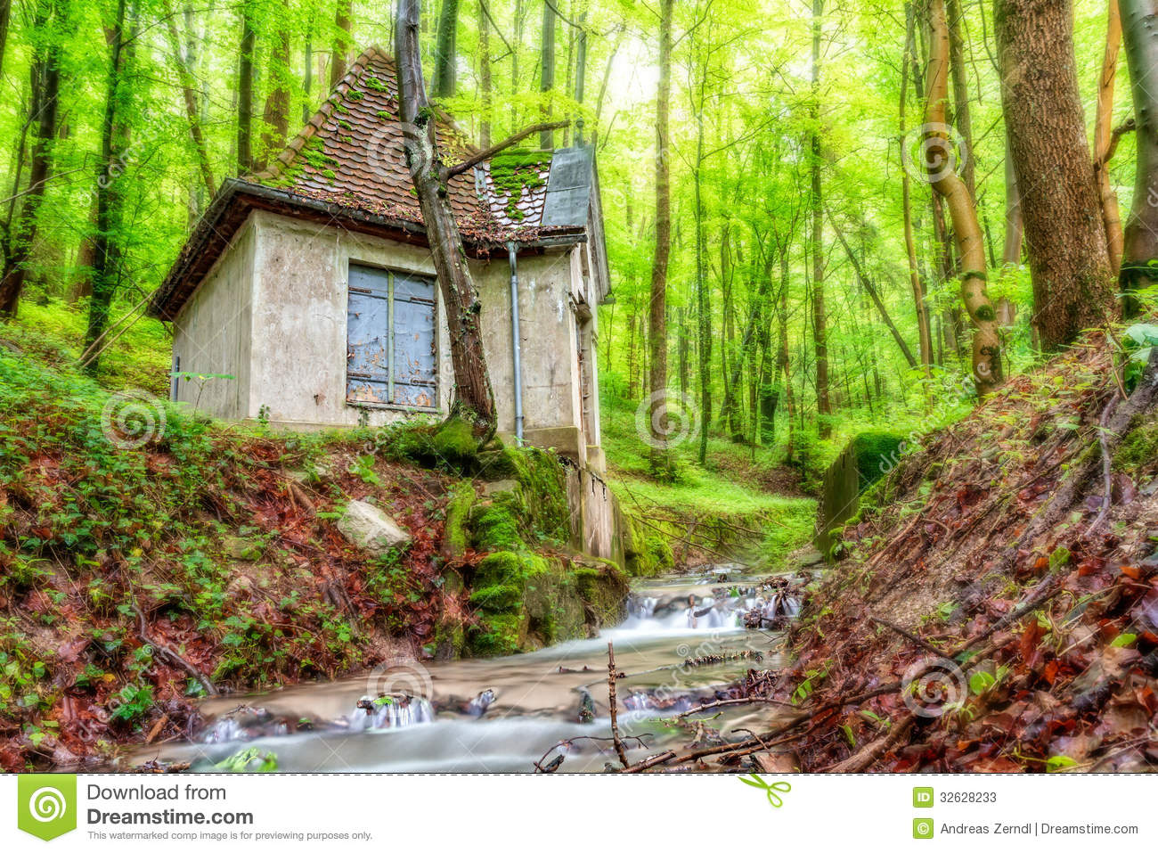 Forest Water House Stock Photos Image 32628233