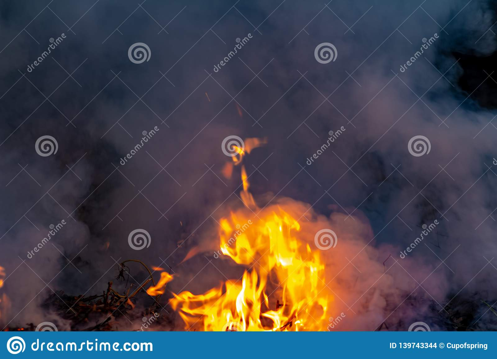 Forest wildfire at night whole area covered by flame and clouds of dark smoke. Distorted details due high temperature and
