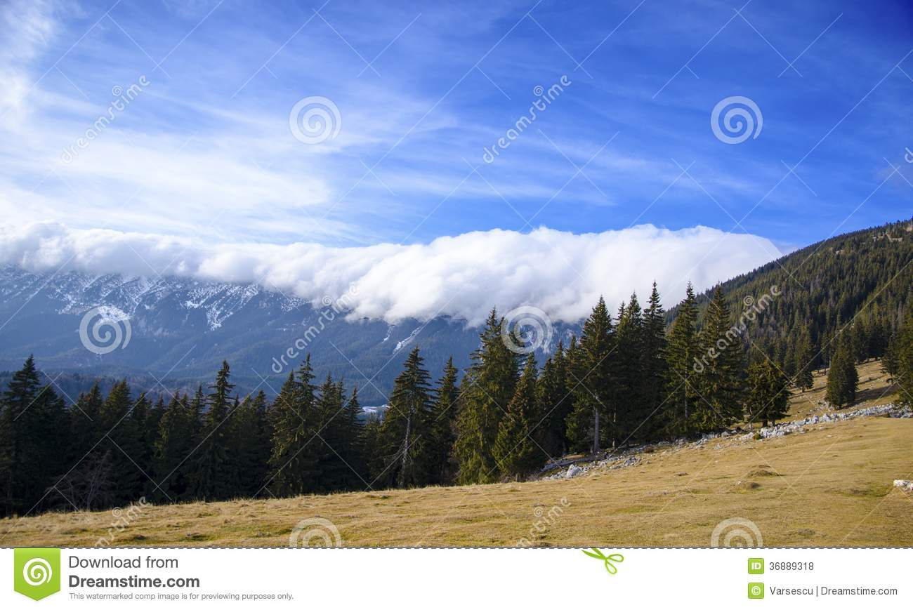 Download Foresta e montagne fotografia stock. Immagine di albero - 36889318