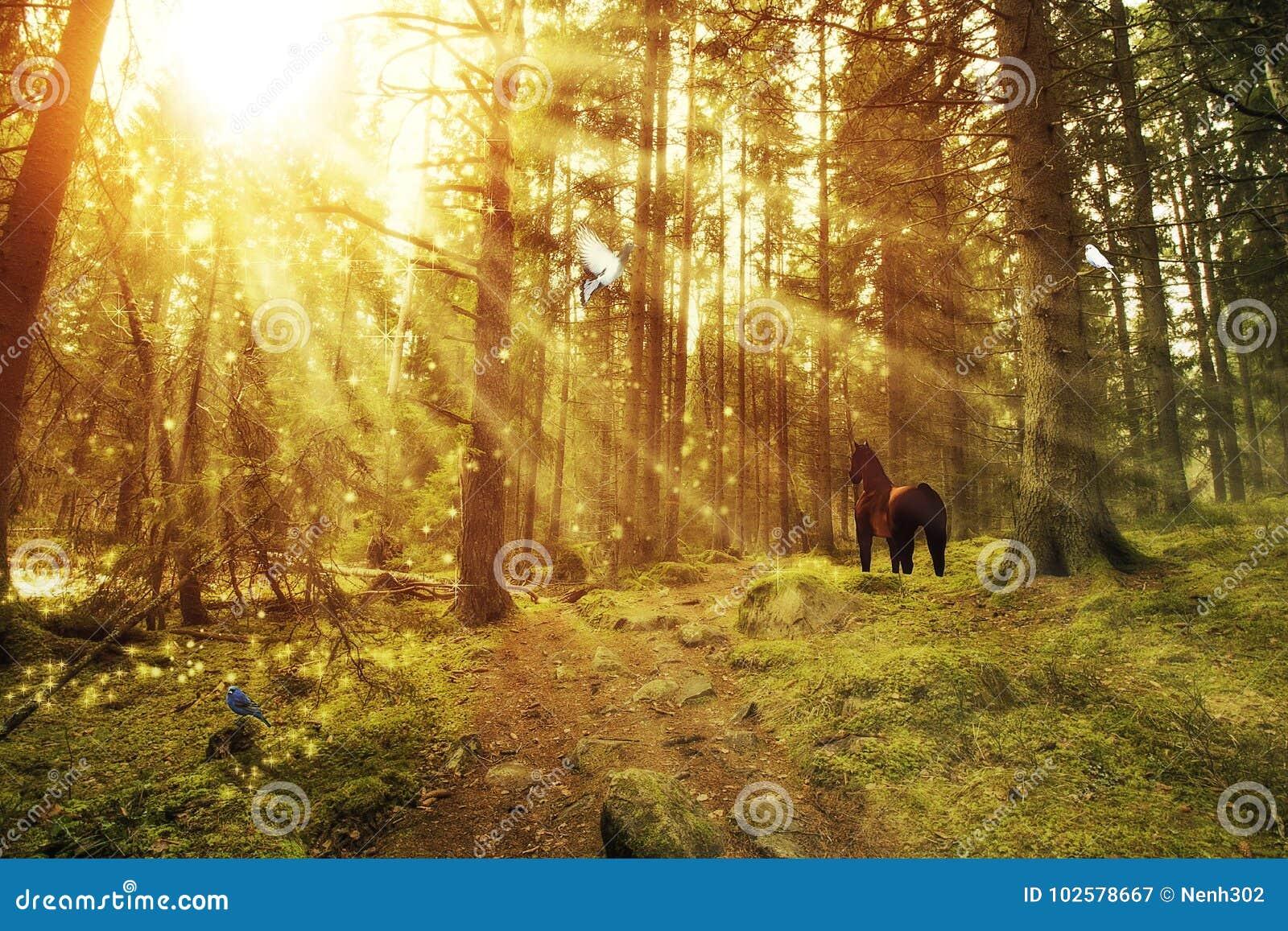 Foresta incantata con un cavallo e gli uccelli