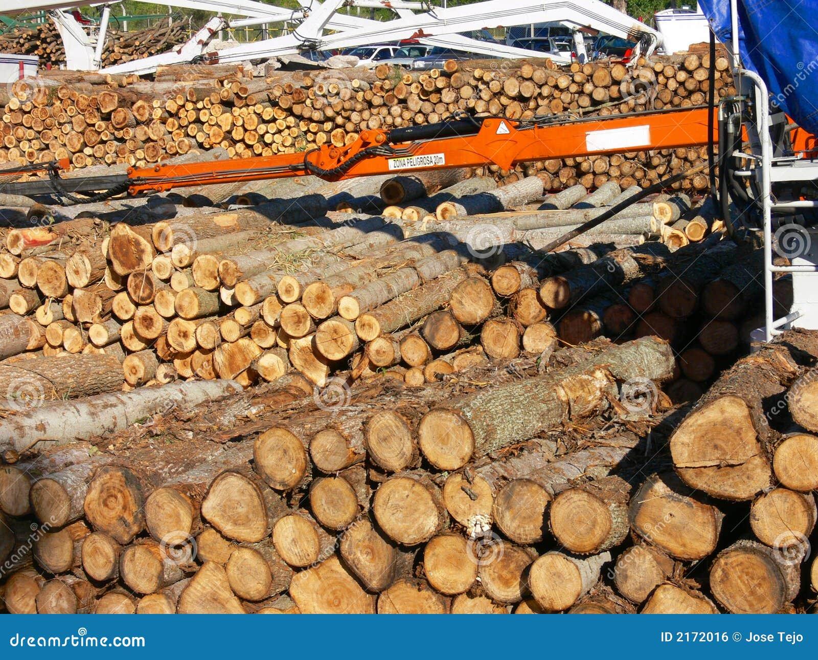 Forestal produktion