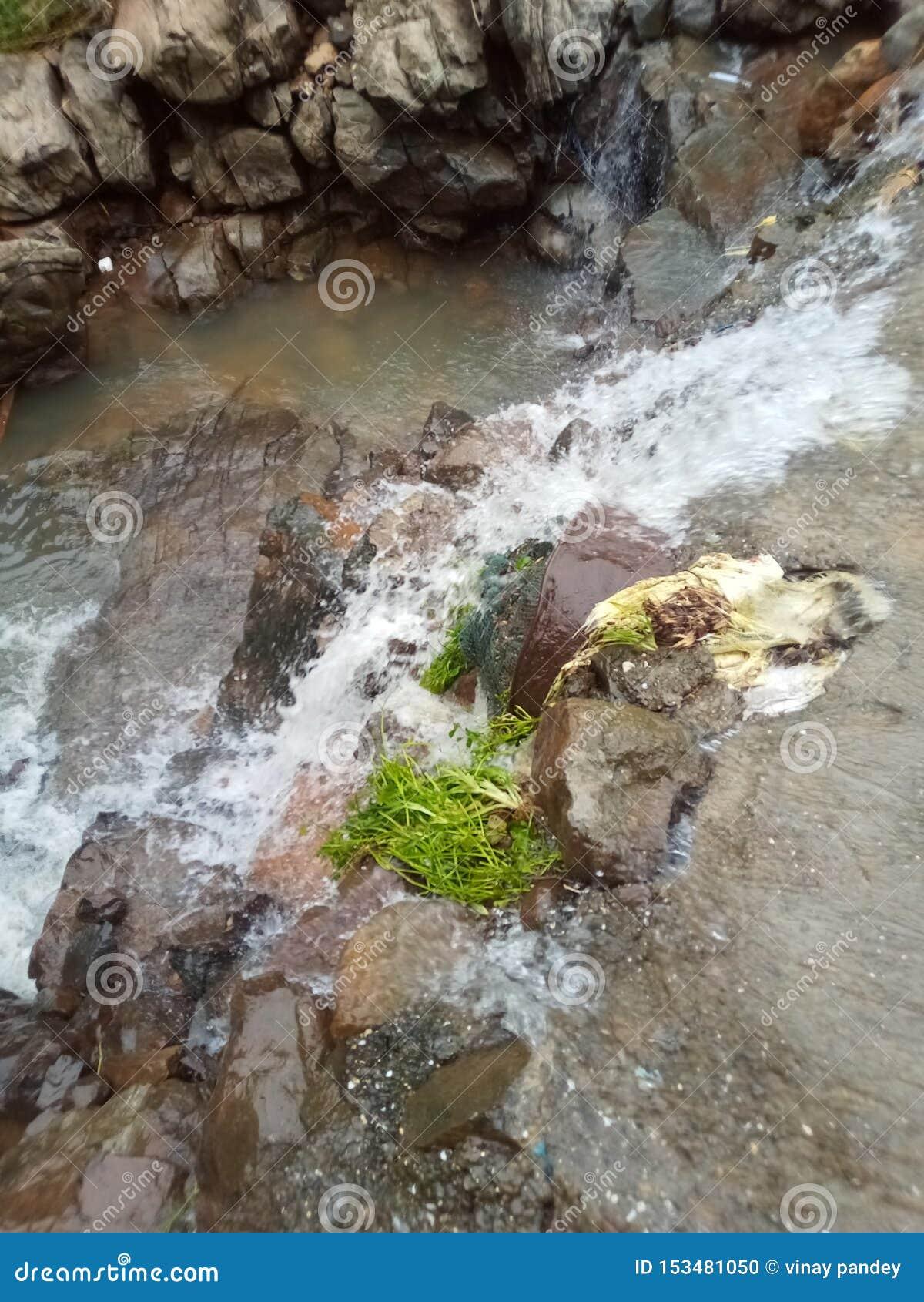 Foresthill, лес, холм, река, MountainView, гора, водопад, вода,