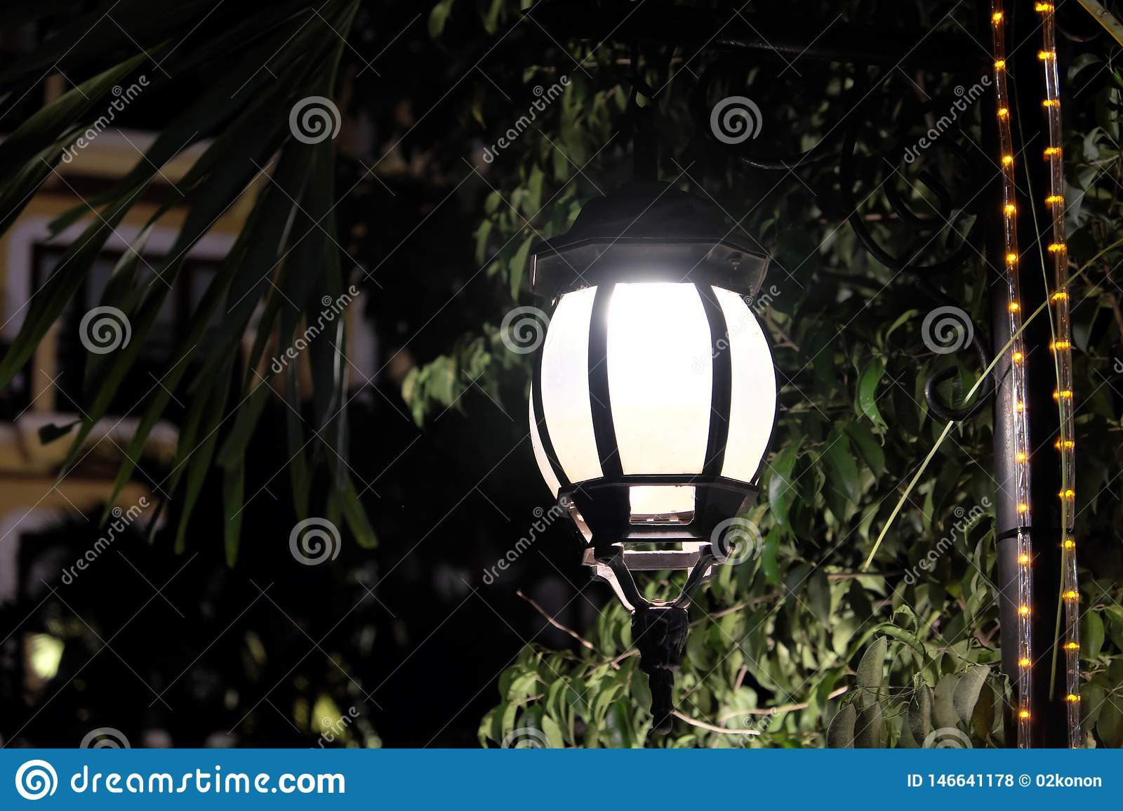 Forged vintage lantern illuminates the leaves of the tree. Bright light emanating from a street lamp