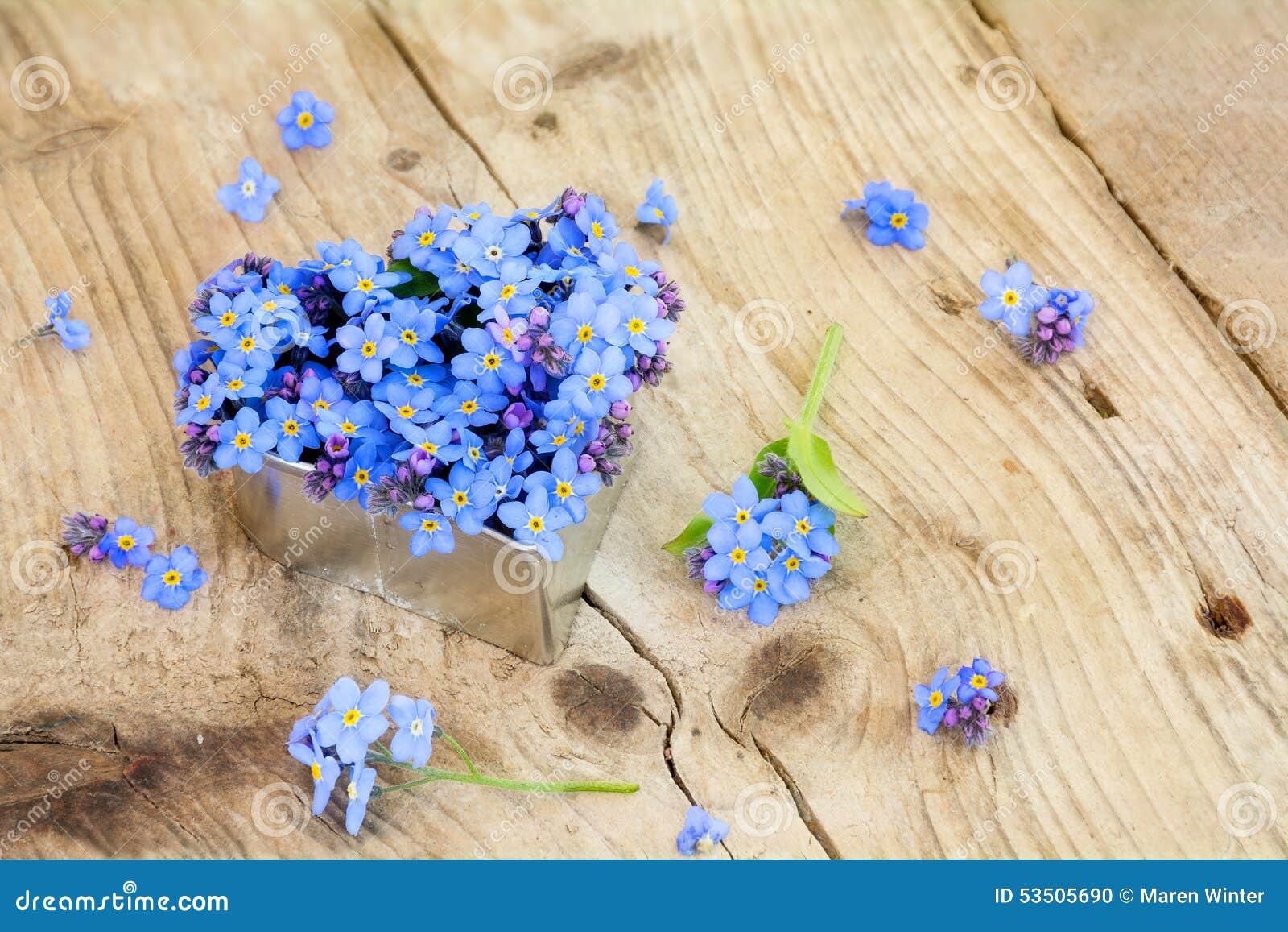 forget me not flowers heart the image. Black Bedroom Furniture Sets. Home Design Ideas