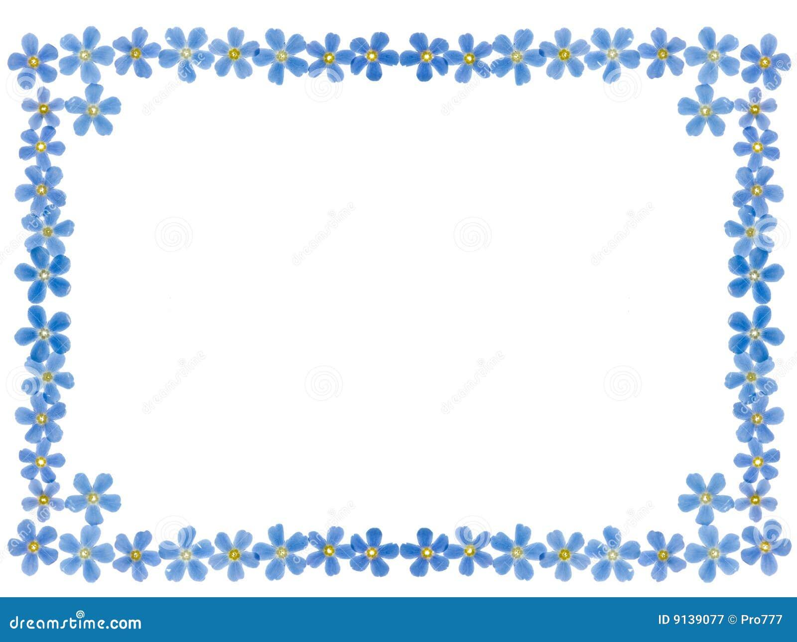 forget me not frame stock image image of botanical fresh 9139077. Black Bedroom Furniture Sets. Home Design Ideas
