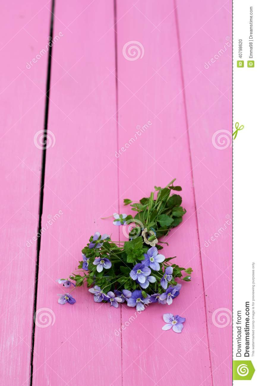 Forget me nots on pink