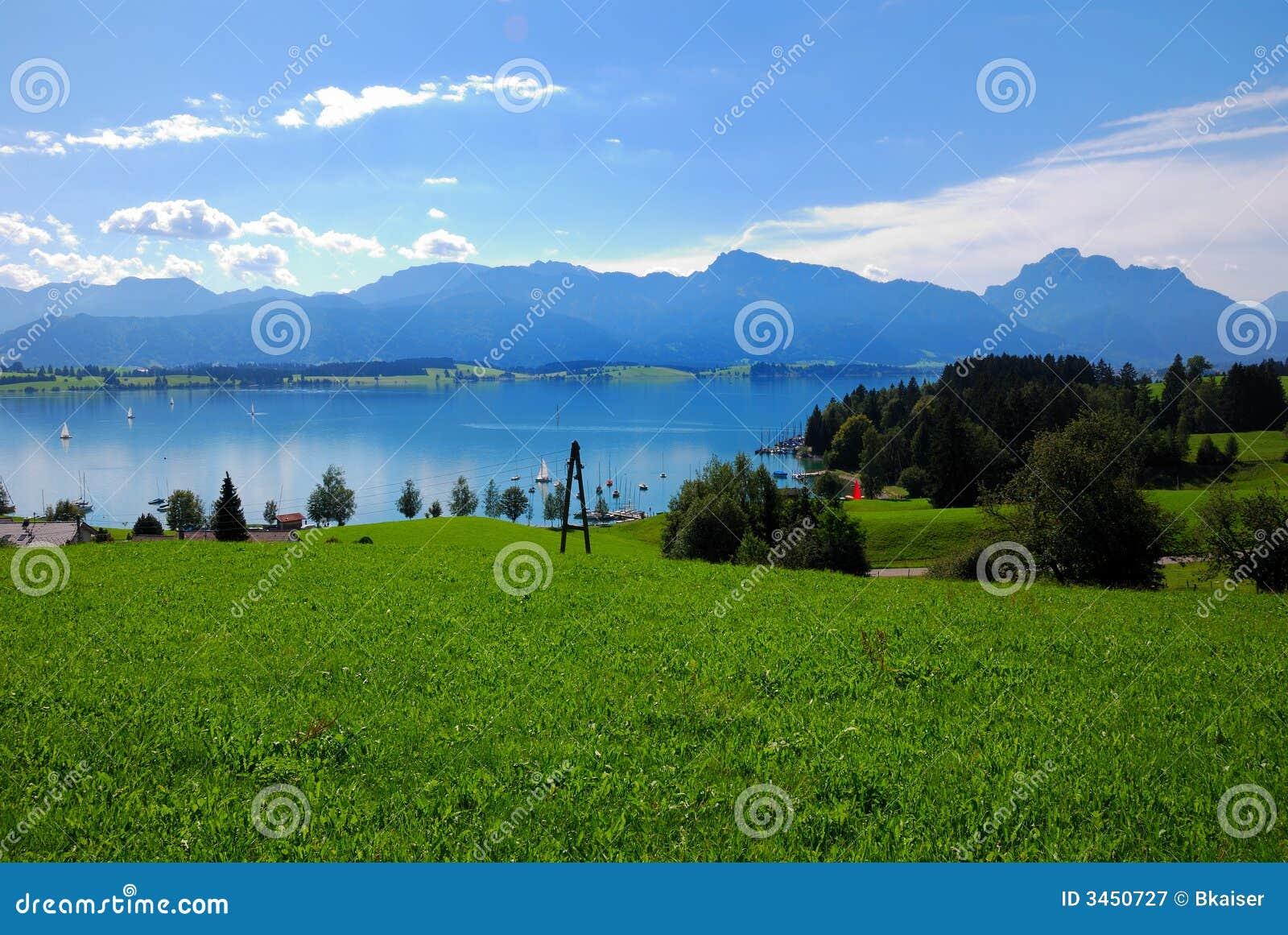 Forggensee und Alpen
