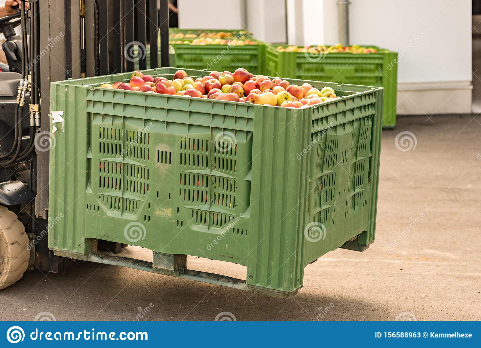 Forklift carries crates of fruit. Many apples in container