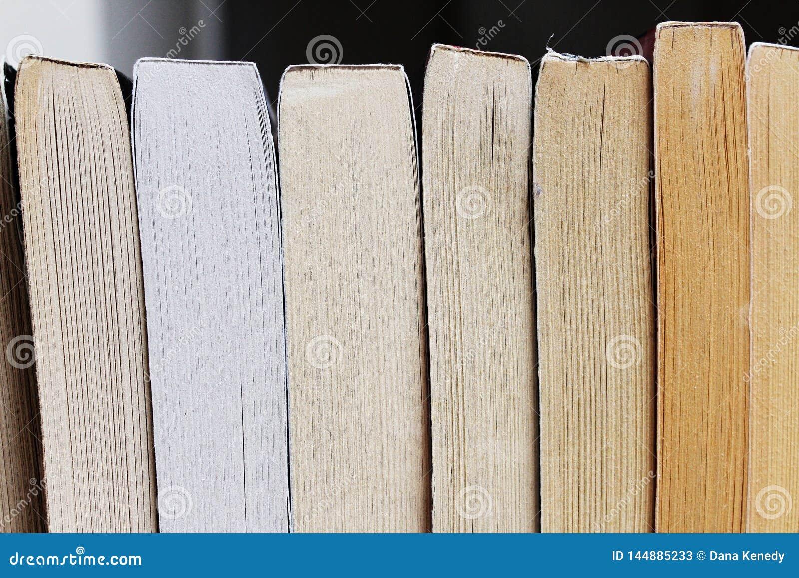 Formação de novelas do rascunho